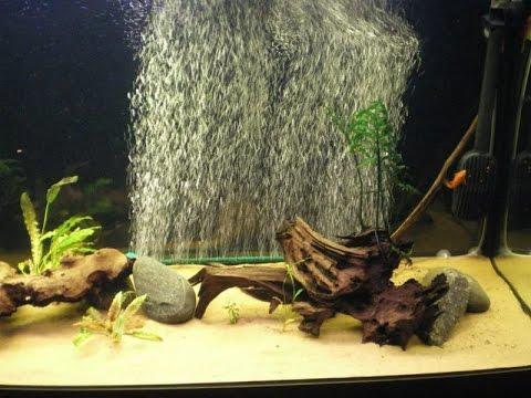 Аэрации для аквариума своими руками