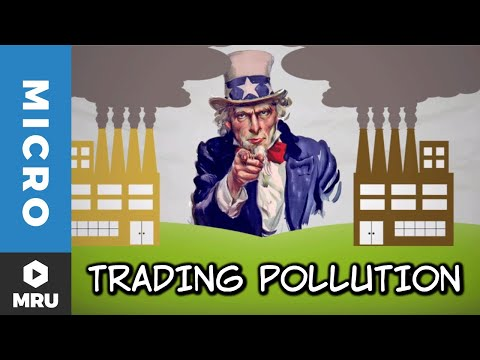 Trading Pollution: How Pollution Permits Paradoxically Reduce Emissions
