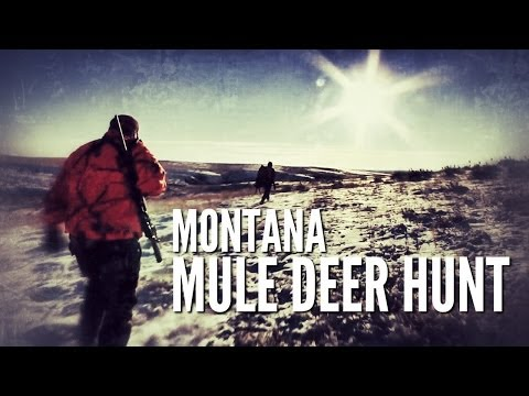 Steele The Man – Montana Mule Deer Hunting