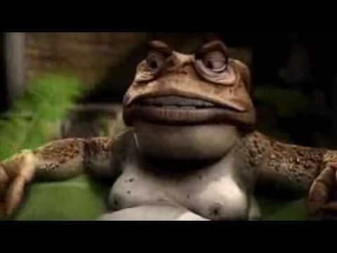 Cane Toads - Les Paterson