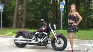 10. New 2014 Harley Davidson Softail Slim Motorcycles for sale - New Port Richey, FL