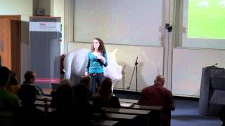 Systems Aikido: A philosophy for engineering complex systems: Alex Penn at TEDxSouthamptonUniversity