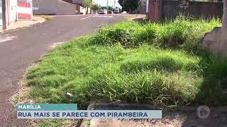 Marília: moradores reclamam de falta infraestrutura em bairros
