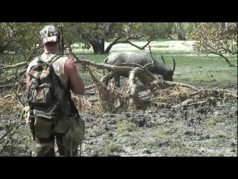Swamp Hogs ( Bow Hunting The Top End Australia )