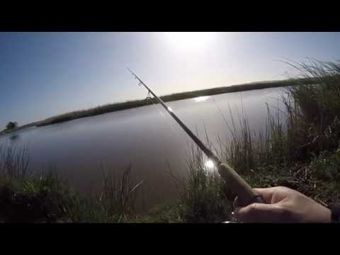 suisun marina/ Grizzly island fishing