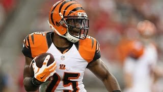 Giovani Bernard of the Cincinnati Bengals is one of the most exciting young running backs in the NFL. Here are some of his best ...