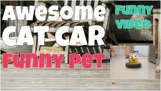 Awesome cat car  funny video by 7 seconds of happiness▶ Thank you for watching this video! If you like it, please, put likes 👍, comments & subscribe to my channel for updates: https://www.youtube.com/channel/UCxSIy_SyK0L8NVVZevNkKew/about?sub_confirmation=1▶ New Best Short Funny Videos all the time: https://www.youtube.com/watch?v=MRtISYYK5uo&index=25&list=PLWUagoeqmhs7r_2QGP9kgn6ZsuFP-mcINWelcome to ★ 7 seconds of happiness ★ best short funny videos channel!!!FOLLOW ME:▶ Google+:  https://plus.google.com/u/1/+Jo7secondsofhappiness▶ Twitter: https://twitter.com/djidjio369▶ Facebook: https://www.facebook.com/7seconds.of.happinessIf you see a clip that you own that you did not submit or give consent for use, we have likely received false permissions and would be happy to resolve this for you! ☆•*•.¸¸. HAPPINESS ☆•*•.¸¸☆•*´¨`*☆•.¸¸.╔╗┼║║┼┼╔══╦═╗╔═╦══╗║║┼╔╣╔╗╠╗║║╔╣║═╣║╚═╝║╚╝║║╚╝║║║═╣╚═══╩══╝╚══╝╚══╝☆ ☜♡☞ Love is everything ☆•*•.¸¸☆•*´¨`*☆•.¸¸.----#7secondsFunnyVideos, #7SecondsOfHappiness, #7secondsVideos, #7secondVideo, #FunnyVideo