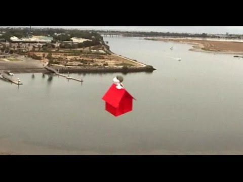 Someone Created a Flying Ace Snoopy