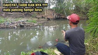 Video ikan apa itu ?? .. mancing di spot ini joran melengkung strike bertubi-tubi MP3, 3GP, MP4, WEBM, AVI, FLV Agustus 2019