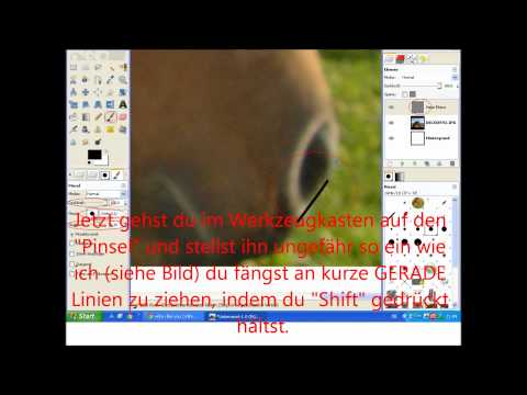 Drawing a horse – with Gimp 2.6 / Pferd malen – mit Gimp 2.6