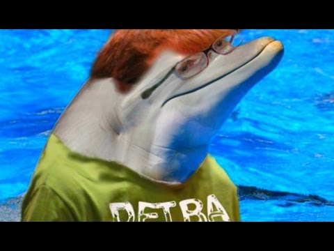 virtual - Oculus Rift, Classroom Aquatic: Today Hank Green becomes a Dolphin! Watch Hankphin try and cheat his way to an A+ in Classroom Aquatic! Subscribe now for daily gaming videos with Hank Green!...