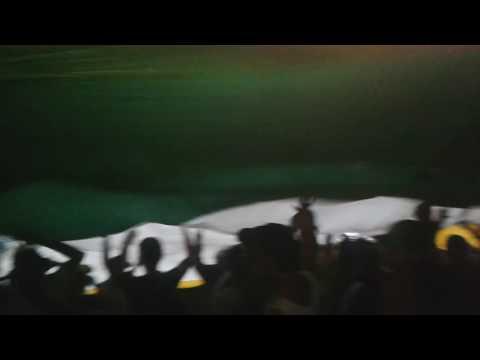 Tapa tribunas. Avs cdq - Artillería Verde Sur - Deportes Quindío - Colombia - América del Sur