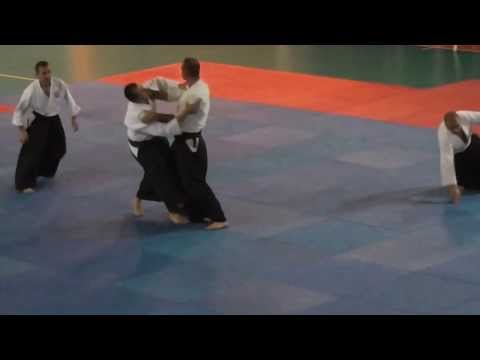 Aikido Demonstration IMEON NSA
