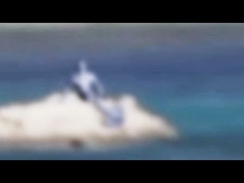 Real Mermaid Caught On Camera