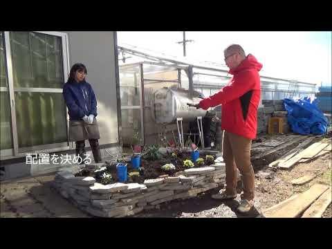 バラと一緒に宿根草を植える