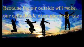 We Will Become Silhouettes -The Shins