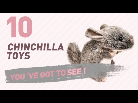 Chinchilla Toys, UK Top 10 Collection // New & Popular 2017