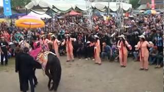 Pertunjukan Festival Seni Kuda Renggong - Kuda Silat
