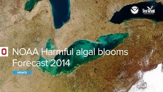 National Oceanic and Atmospheric Administration Harmful Algal Blooms Forecast 2014 Webinar
