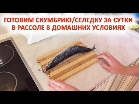 Как приготовить скумбрию в рассоле в домашних условиях