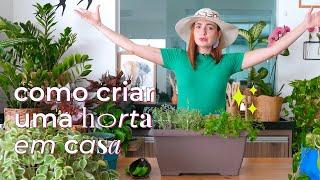 Como criar uma horta em casa   STL + Lu Fiorito