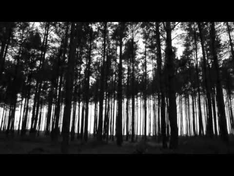 """TRZY DNI PÓŹNIEJ - ESTER (WODA) z albumu """"Pokój jej cieniom"""""""