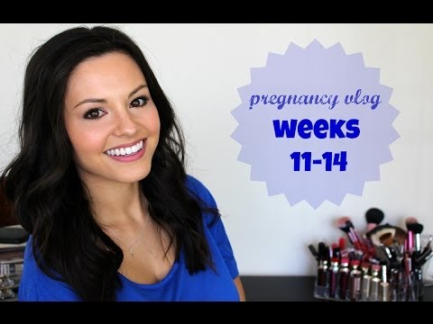 Pregnancy Vlog | Weeks 11-14