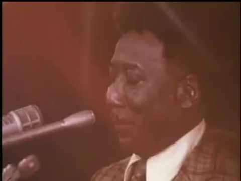 Got My Mojo Working - Muddy Waters LIVE 1971