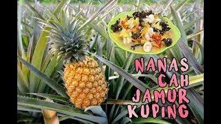 Video NANAS CAH JAMUR KUPING... GAMPANG BANGET MASAKNYA!!! MP3, 3GP, MP4, WEBM, AVI, FLV Mei 2019