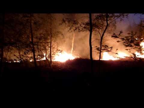 Portugal fire survivor: 'I should have died'