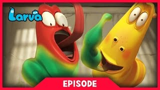 Video LARVA - SUPER STRENGTH | 2017 Cartoon Movie | Cartoons For Children | 라바 | LARVA Official MP3, 3GP, MP4, WEBM, AVI, FLV Oktober 2018