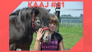 Kaaj Vlogs:Kaaj is de leukste shetlander die ik ken. Ik heb hem altijd gereden, maar nu ben ik helaas te groot. Maar ik blijf naar hem toegaan om hem te kroelen, poetsen, spelen en lekker te wandelen.➡️ Vandaag had ik een foto shoot met mijn lieve vriendje Kaaj. De fotograven is Quinty en zij is in te huren. Voor meer info kun je even kijken op haar insta account: http://instagram.com/quintywallenburg.fotografie of kijk even op haar youtube kanaal Horselife: https://www.youtube.com/channel/UCtg_L5oJtRvQTy-uAuKODZwNatuurlijk heb ik ook Kaaj een paarden massage gegeven waar ik pas een workshop voor heb gehad. Video: https://youtu.be/LDbhG8zhmdYEn hoe bizar was het dat hij reageerde op de aromatouch die staat voor jeuk. Hij heeft op dit moment ook erg veel jeuk. Echt zo bijzonder hoe dat werkt. En we hebben nog even geoefend op het flamen. Kappen ponyGroetjes Marina #YouTubeQueenJOEHOEHOE…http://www.blindhappyandfree.comJe kunt mij ook vinden op:http://www.facebook.com/marinakatarinakovachttp://www.twitter.com/MarinaKKovachttp://www.instagram.com/marinakatarinakovacMusical.ly: @kuss_marinaSnapchat: kuss_marinaOf mail naar: marinakovac2004@gmail.comFan mail kan naar het postadres:Familie De ManT.a.v. MarinaDe Heerlijkheid 853344 BP H. I. Ambacht#YouTube #Google #Blind #Kaaj #Shetlander