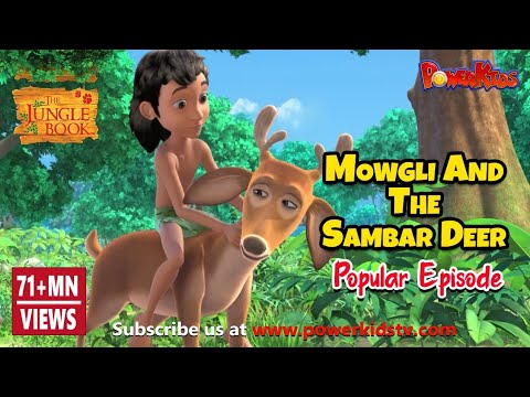 The Jungle Book Hindi Cartoon For Kids Compilation | Mogli Cartoon Hindi |mowgli And The Sambar Deer