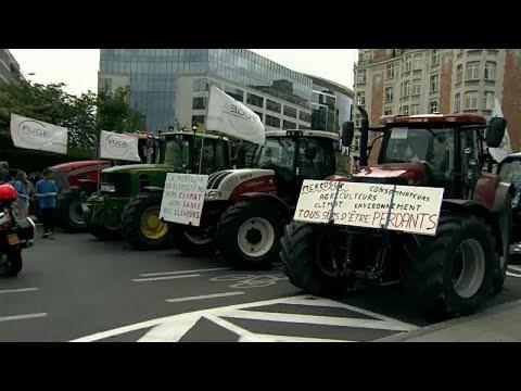 EU: Bauernproteste in Brüssel gegen das Mercosur-Freihandelsabkommen