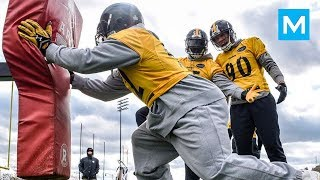STRONGEST NFL PLAYER - James Harrison | Muscle Madness
