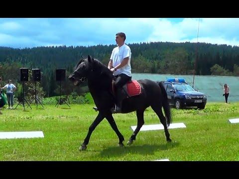 Calul Hutul - The Hutsul Horse, Herghelia LUCINA Stud (Bucovina, Romania)