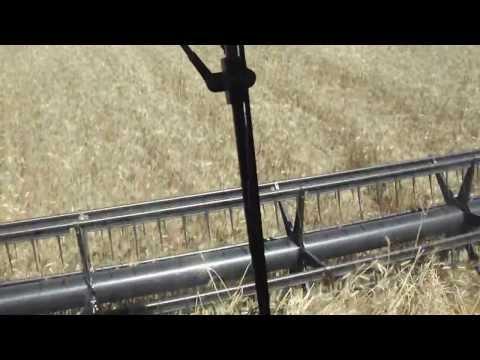 cr 9060 colhendo trigo em cruzmaltina 02