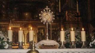 Entre Tus Manos - Grupo Mojado Dedicado A La Comunidad Catolica En Mexico