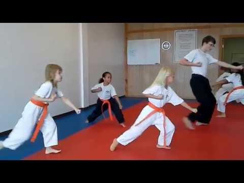 Hampton's Karate Academy - Basic Forms Instruction 01