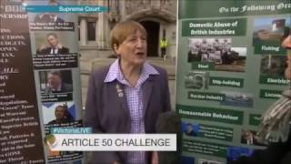 Dr Julia Reid MEP (UKIP) protesting outside the Supreme Court