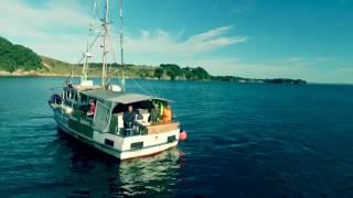 Tauranga New Zealand  city photos : LEE Fish Longline fishing , Tauranga New Zealand