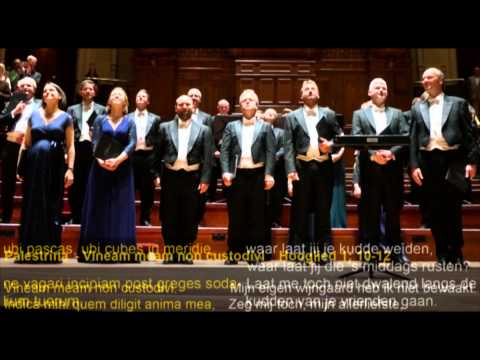 Palestrina and de Victoria by The Sixteen 09 May 2015 in Amsterdam