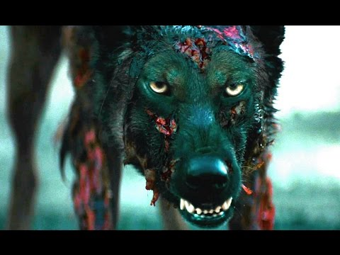 Watch First Trailer for New Remake of Eli Roth s Cabin Fever