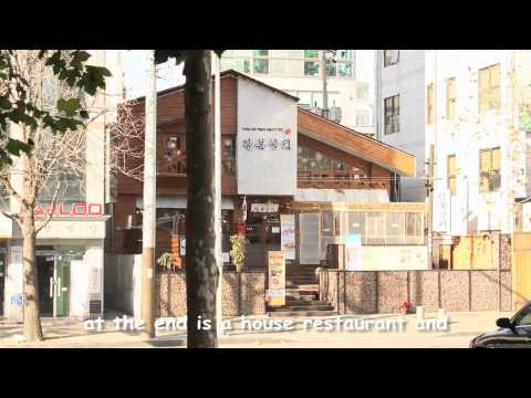 Video Kimchee Hongdae Guesthouse