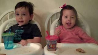Recorded on January 3, 2011 using a Flip Video camcorder. My twins here have a terminal illness named Spinal Muscular...