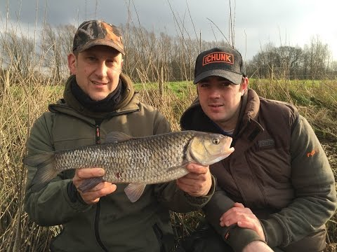 Chub Fishing On The River - Rigs, Tips & Tactics (видео)