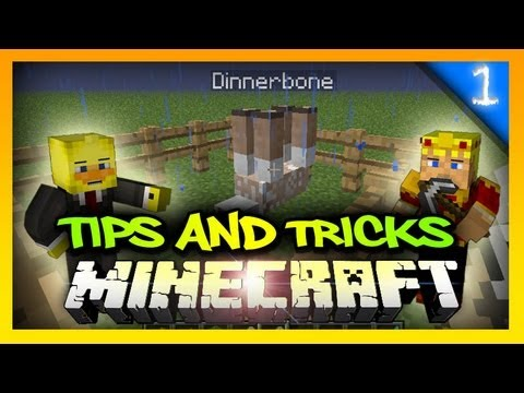 Minecraft Tips And Tricks Episode #1