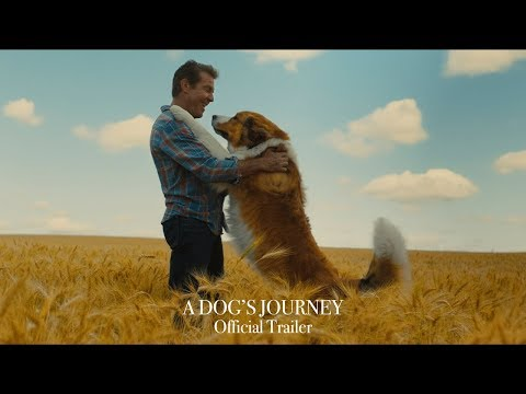A Dog's Journey - Official Trailer (HD)