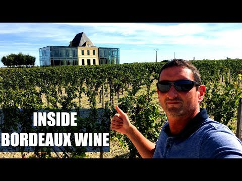 How Wine is Made in a Top Bordeaux Estate?