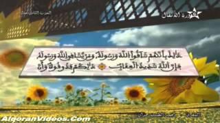 HD المصحف المرتل الحزب 18 للمقرئ محمد الطيب حمدان